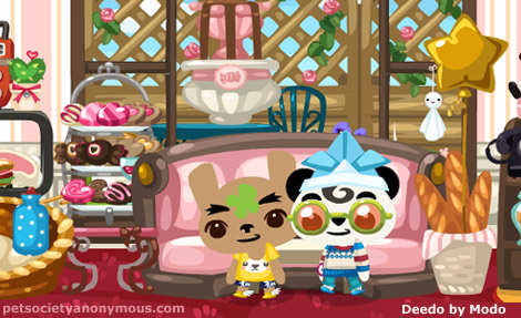 cafe culture in pet society